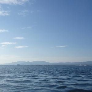 6月23日の琵琶湖 朝がピークでした。