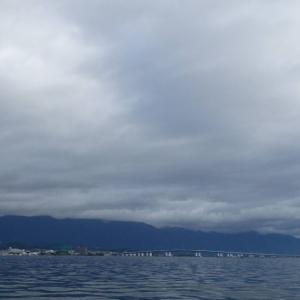 8月11日の琵琶湖 ちょっとだけ見つけることが出来ました。