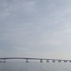 10月3日の琵琶湖 チャター炸裂です。
