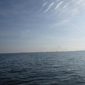 5月14日の琵琶湖 釣れましたね、OTL