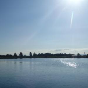 7月24日の琵琶湖 三日間で50upが6本中4本(= ̄▽ ̄=)V