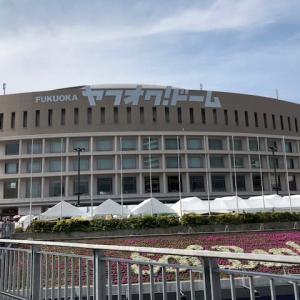 ミスチルドームツアー福岡公演(4/21)に行ってきました!(ネタバレ注意)