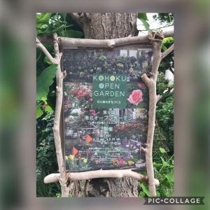 オープンガーデン巡り(横浜市港北区)