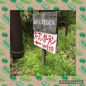 オープンガーデン 山中湖 1