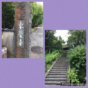 天空のカフェ 鎌倉樹ガーデン