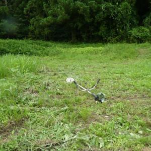週一は草刈り