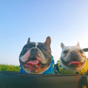 月曜日のお空とジミー&ジャック