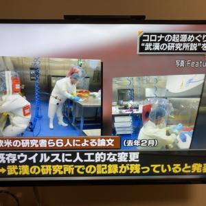 """""""陰謀論""""が真実だと日本のTVが認めた日"""