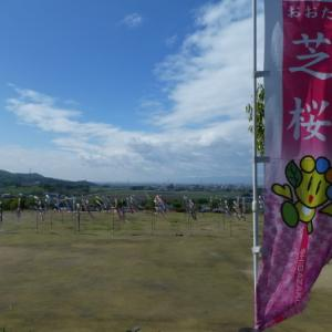 おおた芝桜まつり・ドリームダンスフェスタ12th