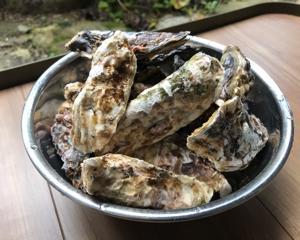 牡蠣の季節がやって来ました