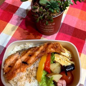 ダンナさんの鮭弁当と鶏ハム弁当*盛り付けのセンスが欲しいです。