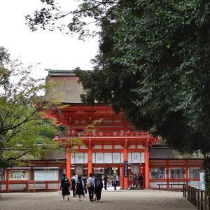 京都旅行♡