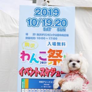 駒沢わんこ祭りに行ったよ♪