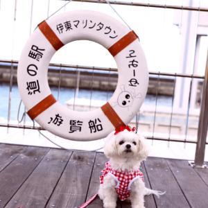 伊豆お誕生日旅行 その2  水族館な船に乗るでつ♪