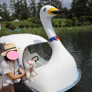 夏休み 長野お泊り旅行に行くでつよ♪