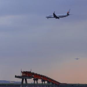 城南島へ久々の飛行機 撮影