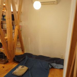 にゃんずの、エアコン取替工事体験
