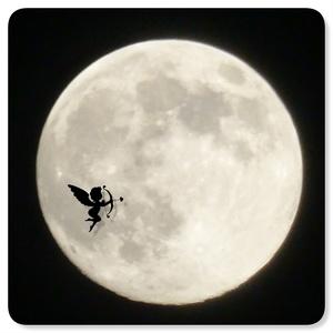 月と太陽の力!!