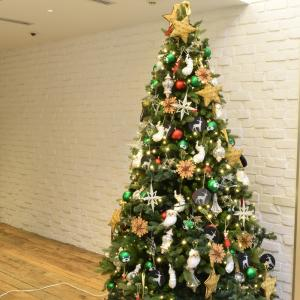 Heartwarming Christmas / 温かいクリスマス