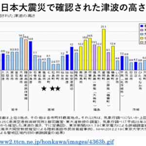 東日本大震災津波被害からの復興10年の総括~島のしくみと島らしさ