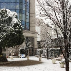 都心にも大雪注意報(→警報)& 10cm程度の積雪予報