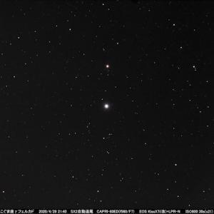 星座を作る星114 こぐま座γ