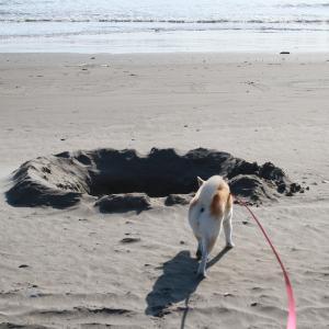 砂浜に残された謎のメッセージを発見!
