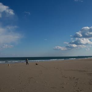 九十九里浜は、何にも無いのが魅力なのです!