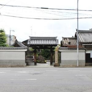 若冲の天井画と信行寺