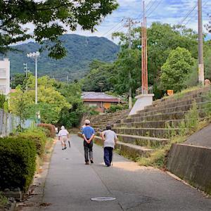 町議会選挙の帰り道