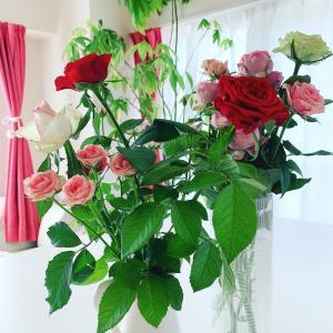 薔薇とジャスミン、どちらも女性性アップじゃない?