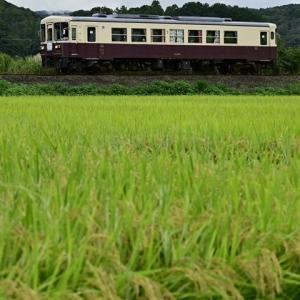 天竜浜名湖鉄道 TH3000形が勇退!