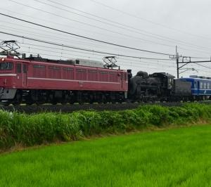 C58 239 大宮出場配給列車