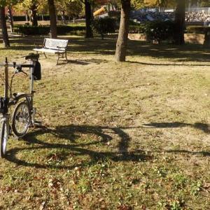 ブロンプトンで早朝ポタリング・・・庄境公園の木々も色づき始めました。