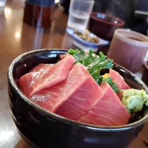 小田原で海鮮丼ライド