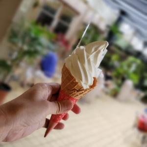 ソフトクリームを食べに久々の200kmライド
