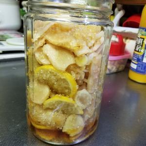 生姜とレモンの酵素シロップ
