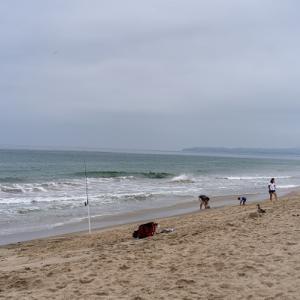 電車が通るビーチ