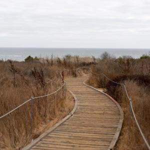ボードウォークを歩いて海を見に