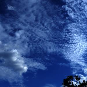 昨日の午後の空