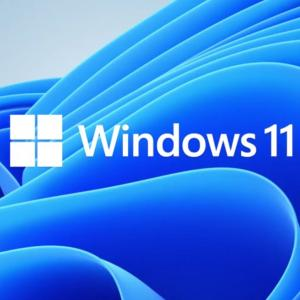 Thinkpad X270 で動かしていたWindows11 Previewを消去