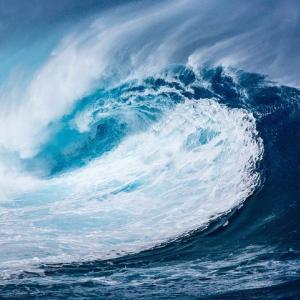 波を読むことばかり考えていた