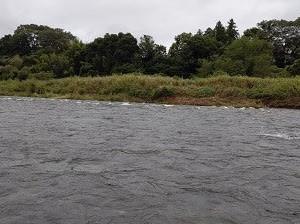 箒川で試釣会