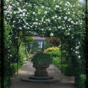 魅惑の庭園「松江イングリッシュガーデン」