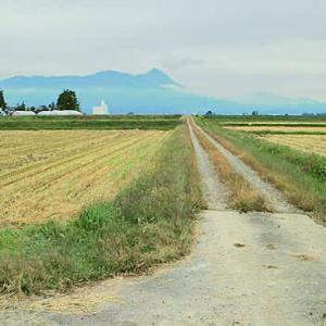 会津野の秋の道遠くまで