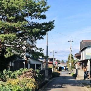 人ひとり通らぬ侘しい村の道