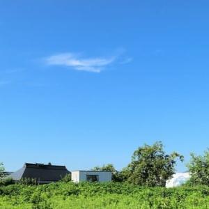 爽やかな夏の朝