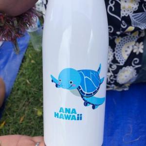 ハワイの仮装大会で優勝しちゃった!@マジックアイランドビーチクリーン