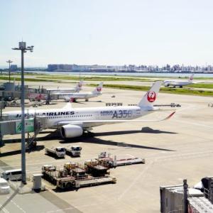 久しぶりの羽田空港で素敵な場所を発見!