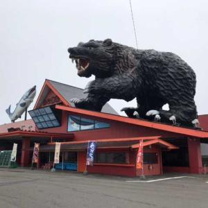 連日暑い北海道! 二日目